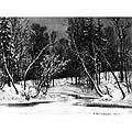 Ручей в березовом лесу (In The Birch Tree Forest)