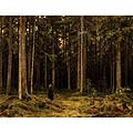 Дождь в дубовом лесу (Rain in the Oak Forest)